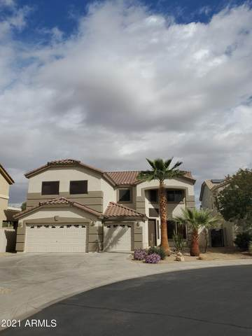 17528 W Tasha Drive, Surprise, AZ 85388 (MLS #6207686) :: The Everest Team at eXp Realty