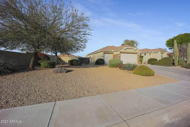 4332 N 161ST Lane, Goodyear, AZ 85395 (MLS #6207769) :: Yost Realty Group at RE/MAX Casa Grande