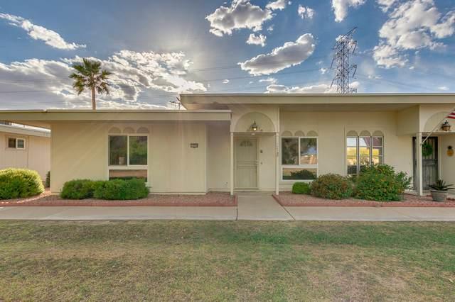 14234 N Newcastle Drive, Sun City, AZ 85351 (MLS #6207804) :: Yost Realty Group at RE/MAX Casa Grande
