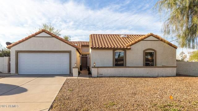 5601 E Paradise Lane, Scottsdale, AZ 85254 (MLS #6208012) :: Yost Realty Group at RE/MAX Casa Grande