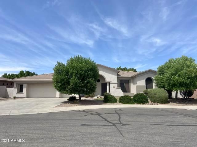 13112 W Rovey Court, Litchfield Park, AZ 85340 (MLS #6208295) :: Yost Realty Group at RE/MAX Casa Grande