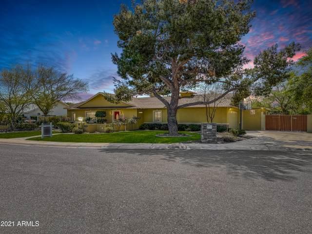 6915 E Orange Blossom Drive, Paradise Valley, AZ 85253 (MLS #6208300) :: Yost Realty Group at RE/MAX Casa Grande