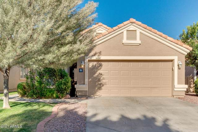 513 S Paradise Drive, Gilbert, AZ 85233 (MLS #6209214) :: Yost Realty Group at RE/MAX Casa Grande