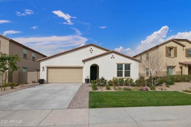 41508 N Cielito Linda Way, San Tan Valley, AZ 85140 (MLS #6209559) :: Yost Realty Group at RE/MAX Casa Grande