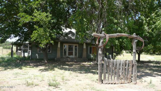 499 S Rolling Hills Road, Young, AZ 85554 (MLS #6210212) :: Service First Realty