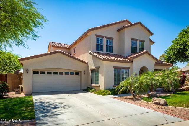 6810 S Amethyst Drive, Chandler, AZ 85249 (MLS #6210323) :: Yost Realty Group at RE/MAX Casa Grande