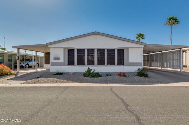 2400 E Baseline Avenue #259, Apache Junction, AZ 85119 (MLS #6211493) :: Yost Realty Group at RE/MAX Casa Grande