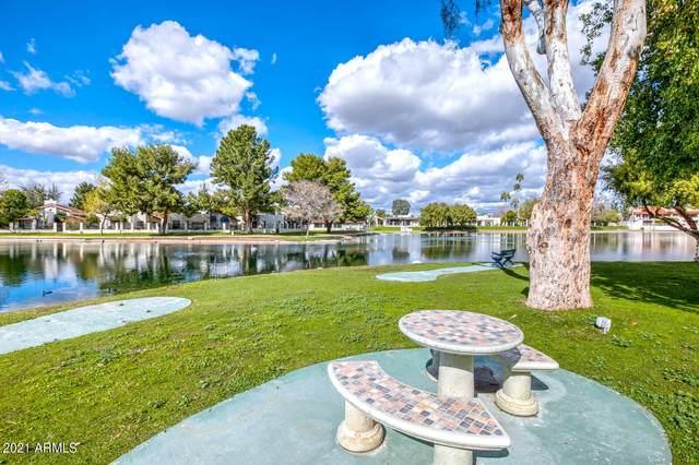 11034 N 28th Drive #206, Phoenix, AZ 85029 (MLS #6211717) :: The Riddle Group