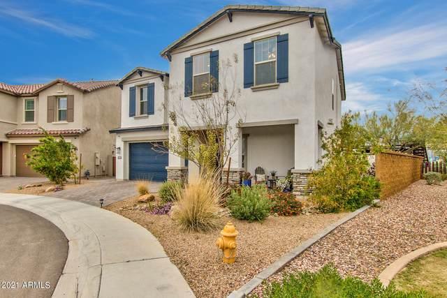 18523 N 65TH Place, Phoenix, AZ 85054 (MLS #6212118) :: Hurtado Homes Group