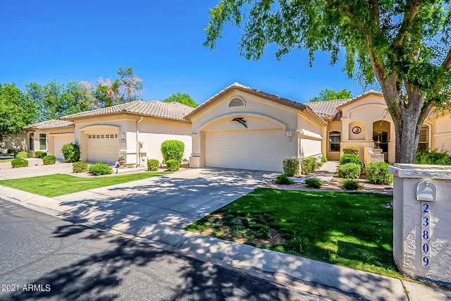 23809 S Pleasant Way, Sun Lakes, AZ 85248 (MLS #6213198) :: Yost Realty Group at RE/MAX Casa Grande