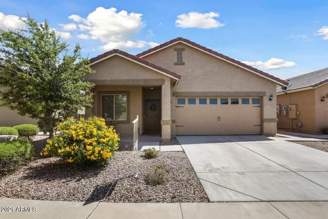 229 S 225TH Lane, Buckeye, AZ 85326 (MLS #6213210) :: Yost Realty Group at RE/MAX Casa Grande