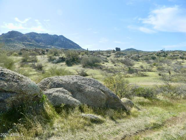 333XX N 136TH Street, Cave Creek, AZ 85331 (MLS #6213282) :: TIBBS Realty