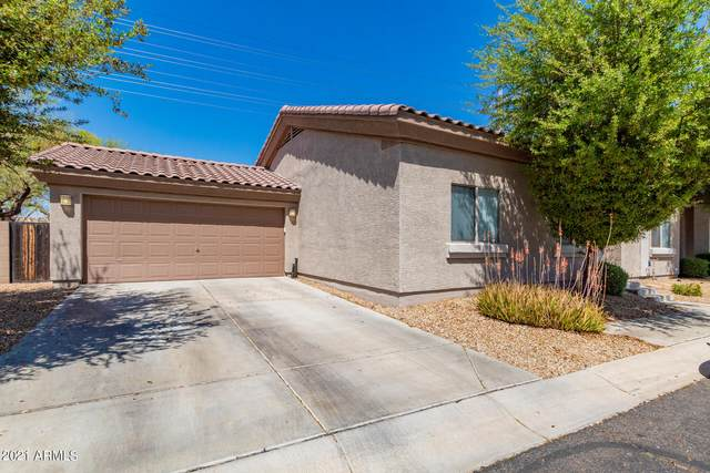 15718 N Hidden Valley Lane, Peoria, AZ 85382 (MLS #6213691) :: The Property Partners at eXp Realty