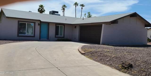 3837 W Crocus Drive, Phoenix, AZ 85053 (MLS #6213726) :: Yost Realty Group at RE/MAX Casa Grande