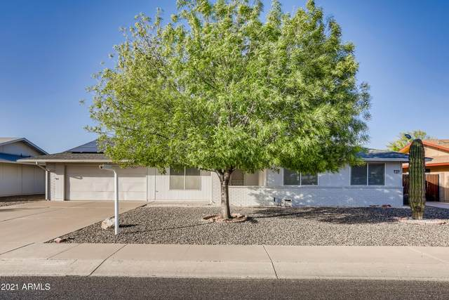 9842 W Forrester Drive, Sun City, AZ 85351 (MLS #6213783) :: The Riddle Group