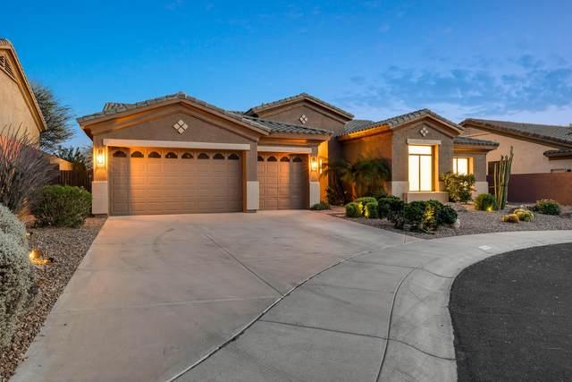13049 E Jenan Drive, Scottsdale, AZ 85259 (MLS #6214435) :: Yost Realty Group at RE/MAX Casa Grande
