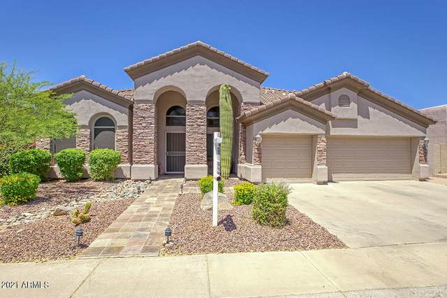 22810 N 48TH Place, Phoenix, AZ 85054 (MLS #6215156) :: Yost Realty Group at RE/MAX Casa Grande