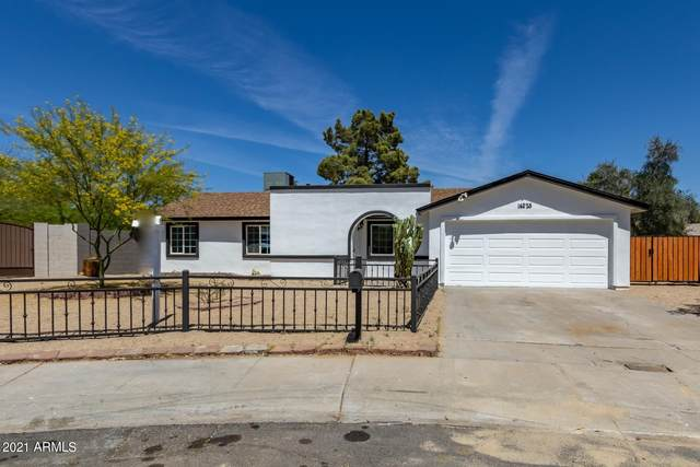 14225 N 37TH Street, Phoenix, AZ 85032 (MLS #6215572) :: Yost Realty Group at RE/MAX Casa Grande