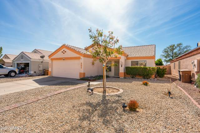 8274 N 111TH Lane, Peoria, AZ 85345 (MLS #6216838) :: Yost Realty Group at RE/MAX Casa Grande