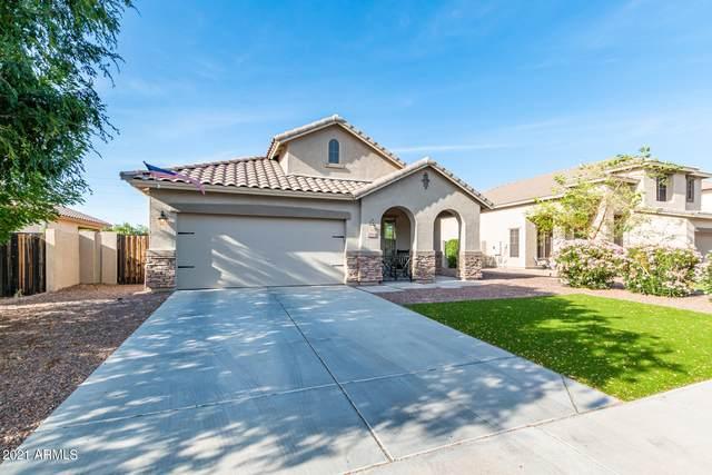 3380 E Pinot Noir Avenue, Gilbert, AZ 85298 (MLS #6216992) :: Yost Realty Group at RE/MAX Casa Grande