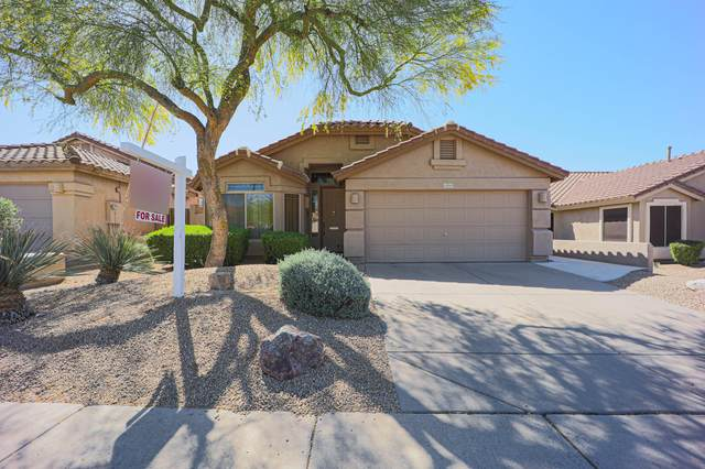 Scottsdale, AZ 85255 :: Yost Realty Group at RE/MAX Casa Grande