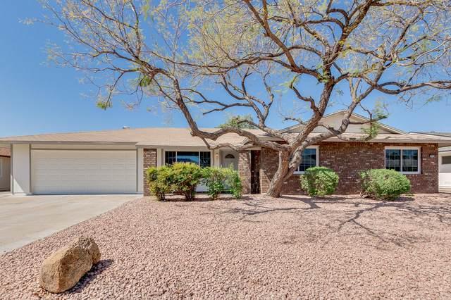 9935 W Concho Circle, Sun City, AZ 85373 (MLS #6217279) :: Maison DeBlanc Real Estate