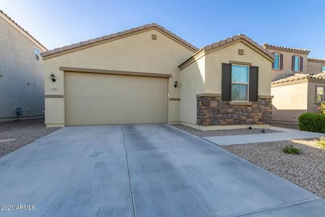 1060 W Canyonlands Court, San Tan Valley, AZ 85140 (MLS #6217346) :: Yost Realty Group at RE/MAX Casa Grande