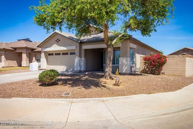 409 S 123RD Lane, Avondale, AZ 85323 (MLS #6218191) :: Yost Realty Group at RE/MAX Casa Grande
