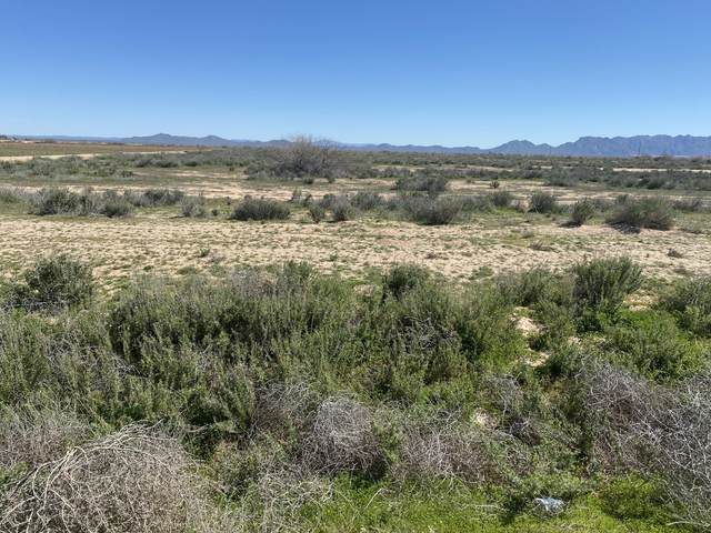 00109 S La Palma Road, Eloy, AZ 85131 (MLS #6218194) :: The Everest Team at eXp Realty