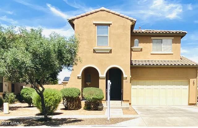 15174 W Aster Drive, Surprise, AZ 85379 (MLS #6218817) :: RE/MAX Desert Showcase
