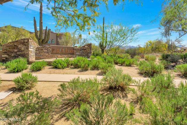 23583 N 91ST Street, Scottsdale, AZ 85255 (MLS #6219058) :: The Newman Team
