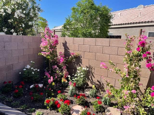 14242 S 47TH Street, Phoenix, AZ 85044 (MLS #6219170) :: Arizona Home Group