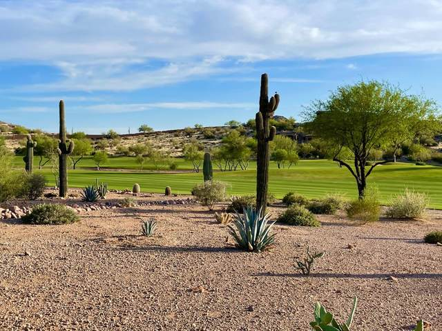 9123 E Superstition Mountain Drive, Gold Canyon, AZ 85118 (MLS #6219684) :: Dijkstra & Co.