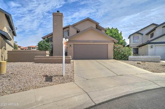 8943 N 63RD Drive, Glendale, AZ 85302 (MLS #6219722) :: Yost Realty Group at RE/MAX Casa Grande