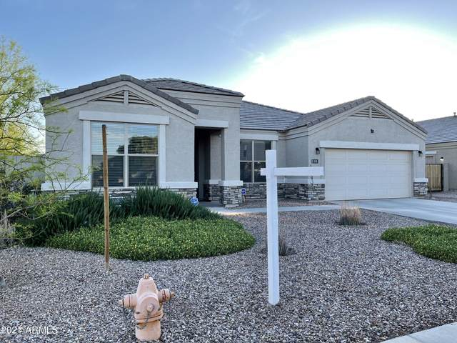 513 W Danish Red Trail, San Tan Valley, AZ 85143 (MLS #6219811) :: Dave Fernandez Team | HomeSmart