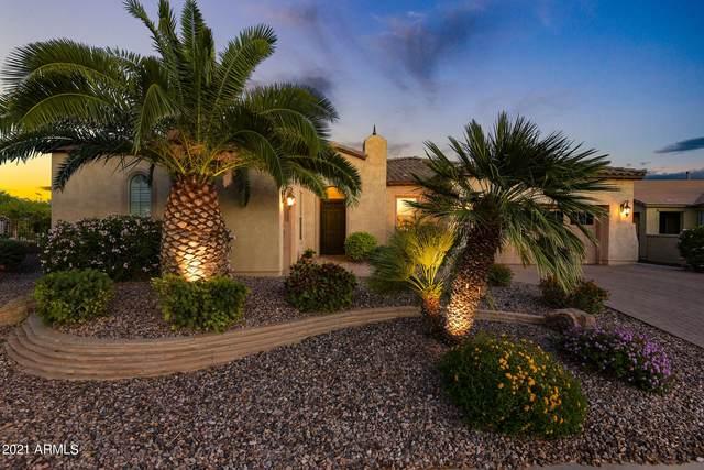 13031 W Evergreen Terrace, Peoria, AZ 85383 (MLS #6220065) :: Howe Realty