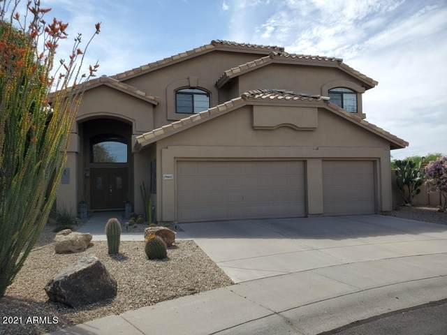 29802 N 43RD Place, Cave Creek, AZ 85331 (MLS #6220133) :: The Carin Nguyen Team