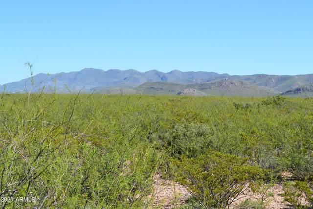 TBD N Leslie Canyon Road, Douglas, AZ 85607 (MLS #6220548) :: The Ellens Team