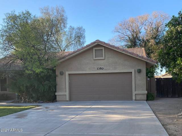 1350 W 13TH Street, Tempe, AZ 85281 (MLS #6220753) :: Service First Realty