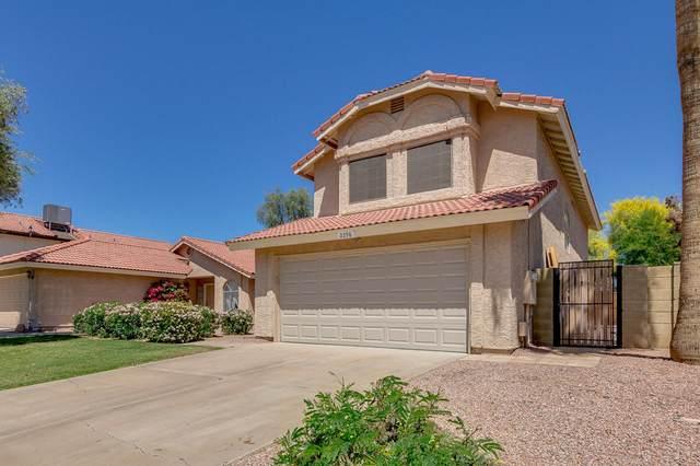 2298 W Gail Drive, Chandler, AZ 85224 (MLS #6220876) :: Yost Realty Group at RE/MAX Casa Grande