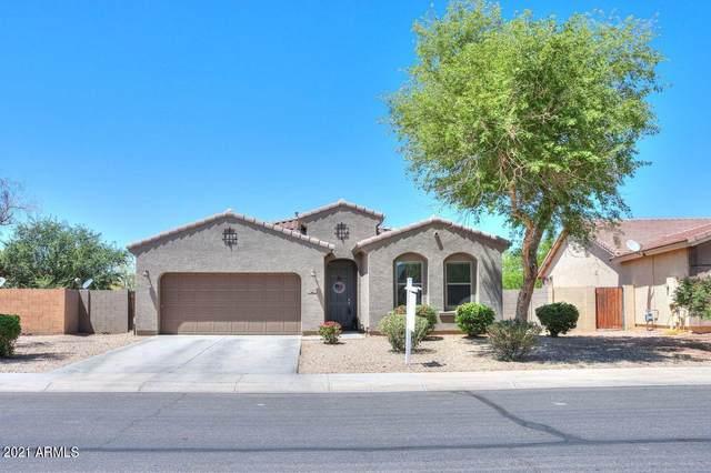 2474 E Dulcinea Trail, Casa Grande, AZ 85194 (MLS #6221000) :: Yost Realty Group at RE/MAX Casa Grande
