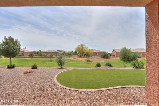 41865 W Springtime Road, Maricopa, AZ 85138 (MLS #6221259) :: Yost Realty Group at RE/MAX Casa Grande