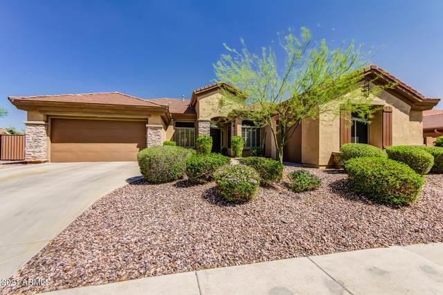 42109 N Bradon Way, Phoenix, AZ 85086 (MLS #6221562) :: Yost Realty Group at RE/MAX Casa Grande