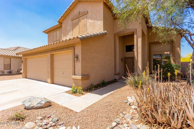 6442 S Wilson Drive, Chandler, AZ 85249 (MLS #6221684) :: Yost Realty Group at RE/MAX Casa Grande