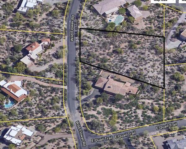 36375 N Wildflower Road, Carefree, AZ 85377 (MLS #6221756) :: Howe Realty