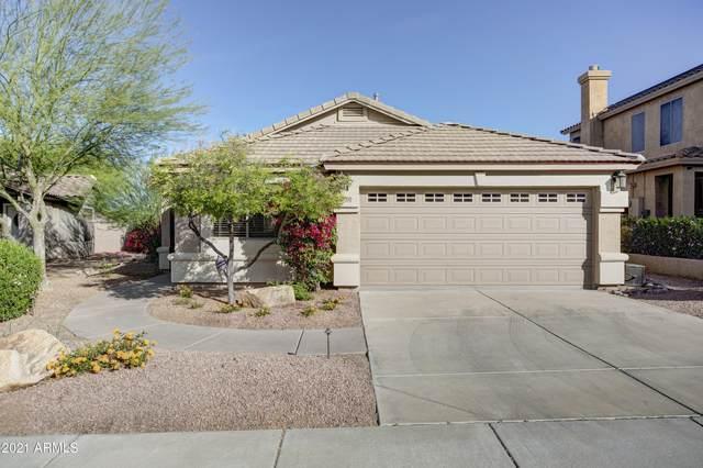 7420 E Christmas Cholla Drive, Scottsdale, AZ 85255 (MLS #6222031) :: Dave Fernandez Team | HomeSmart