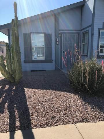 8500 E Southern Street #497, Mesa, AZ 85209 (MLS #6222336) :: Howe Realty