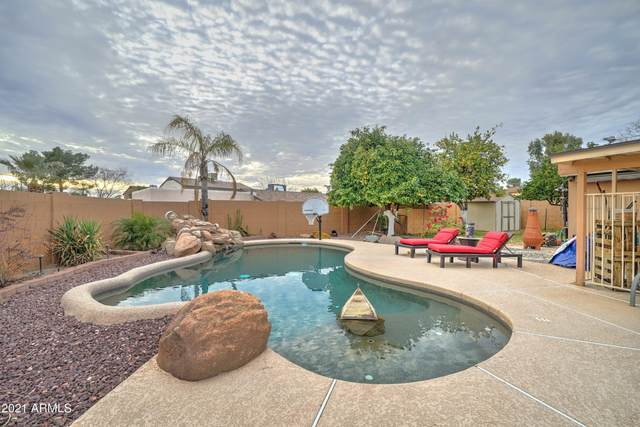 19202 N 15TH Place, Phoenix, AZ 85024 (MLS #6222351) :: The Property Partners at eXp Realty