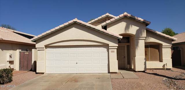 501 S Silverbrush Drive, Chandler, AZ 85226 (MLS #6222885) :: Power Realty Group Model Home Center
