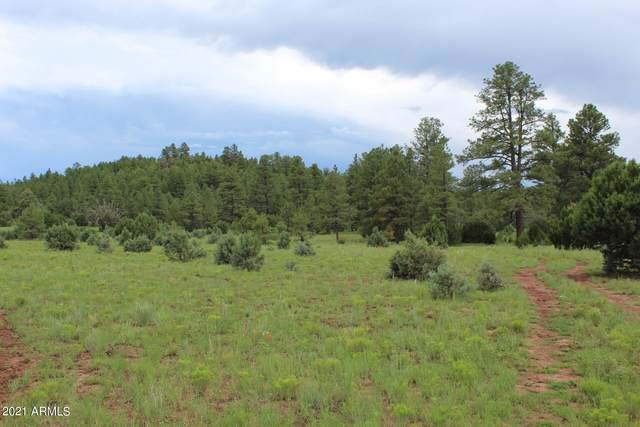 9801 Porter Mountain Road, Lakeside, AZ 85929 (MLS #6223300) :: Klaus Team Real Estate Solutions